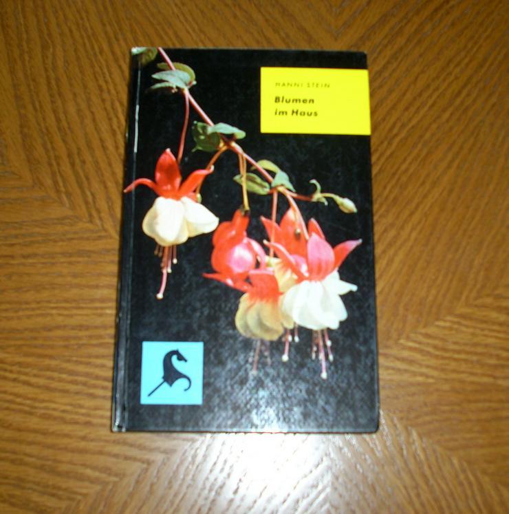 Blumen im Haus - Garten, Heimwerken & Wohnen - Bild 1