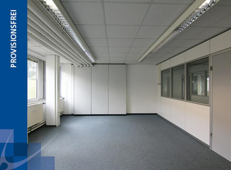 HELLES BÜRO MIT GROßEN FENSTERN IM SOUTERRAIN AB 3,99 EUR/m²! MÖBLIERUNG AUF WUNSCH