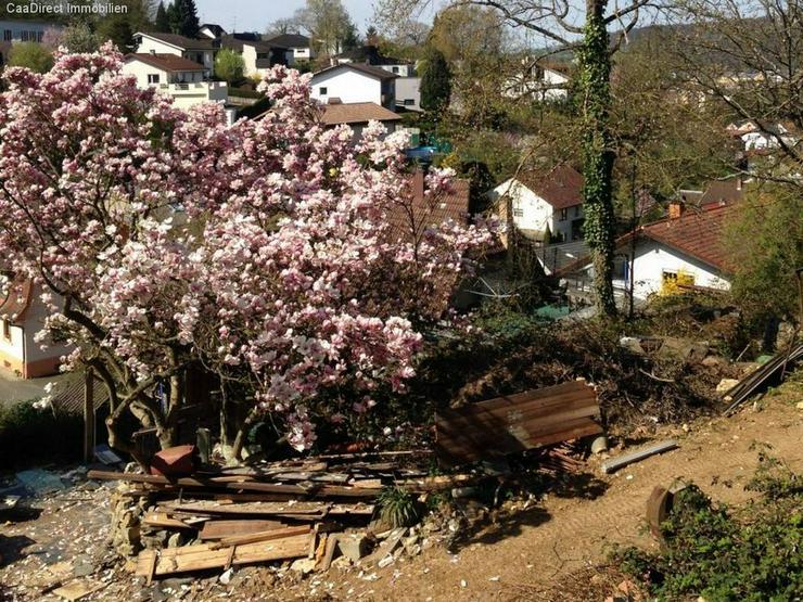 Einmalige Lage in Lörrach-Brombach (Bühl) - Grundstück kaufen - Bild 1