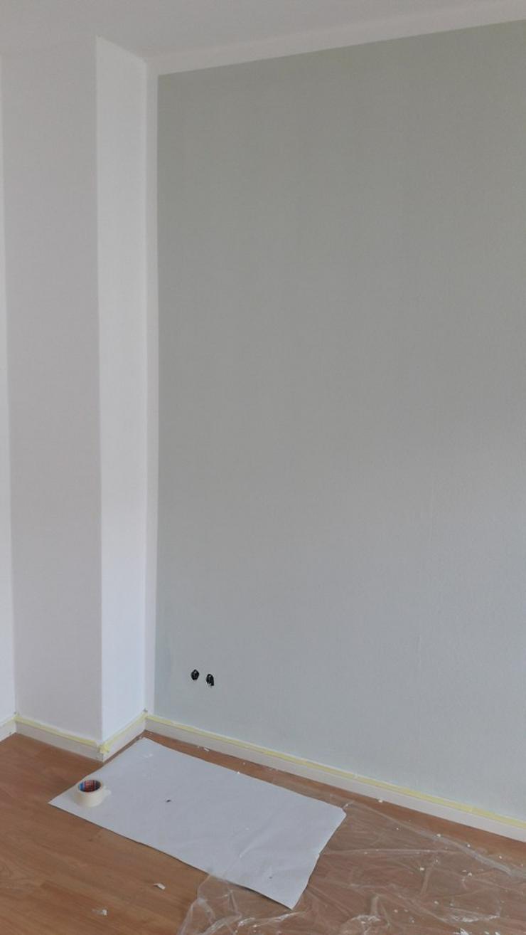 Bild 17: MALER-sucht zum Streichen Ihre Wohnungen bin Günstiger