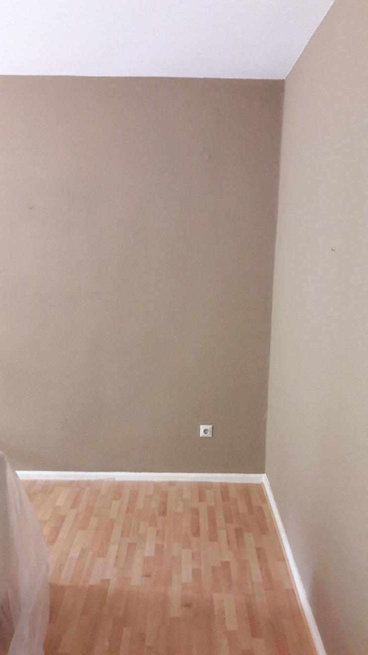 Bild 14: MALER-sucht zum Streichen Ihre Wohnungen bin Günstiger
