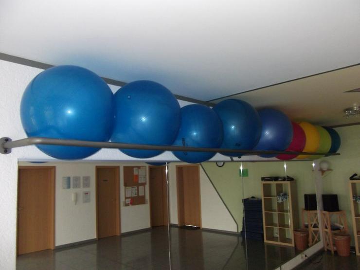 Bild 1: Ballhalter für Pezzibälle
