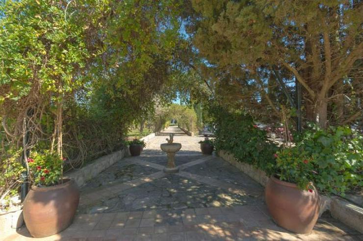 Bild 4: Wunderschöne Finca Agroturismo im Weinbau-Gebiet von Mallorca
