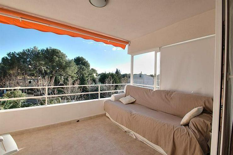 MALLORCA, Paguera - Schöne, 2 SZ. Wohnung in zentraler, ruhiger Lage