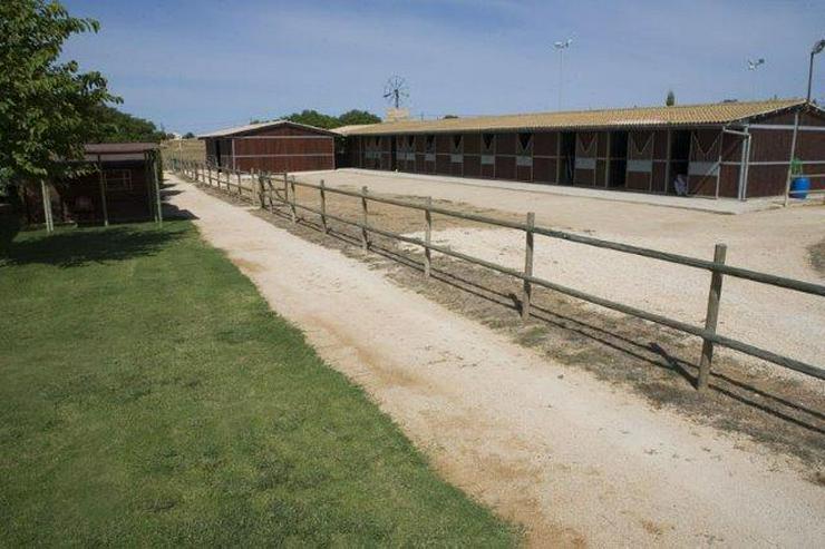 Bild 3: Pferde-Ranch der Oberklasse unweit von Palma Stadt