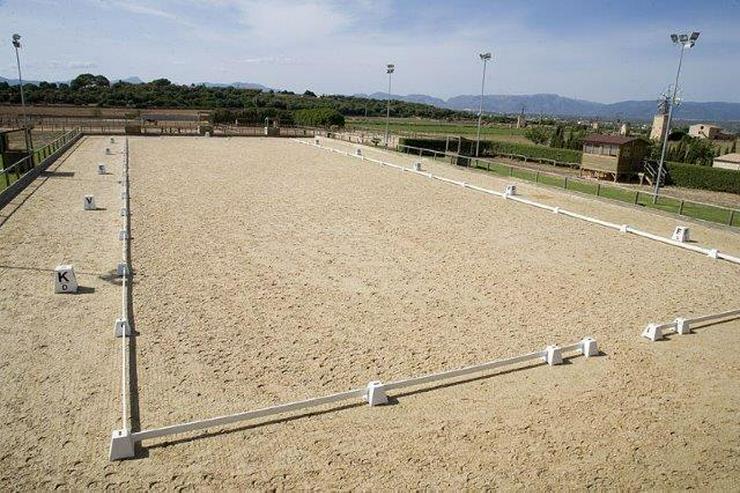 Bild 5: Pferde-Ranch der Oberklasse unweit von Palma Stadt
