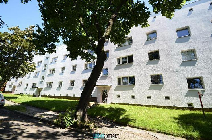 Zweitbezug nach umfangreicher Sanierung - ruhige 2-Zi.-Wohnung im Grünen! - Wohnung mieten - Bild 1