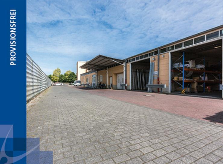 EBENERDIGES KALTLAGER IN MODERNEM BUSINESS PARK AB 4,99 EUR/m²