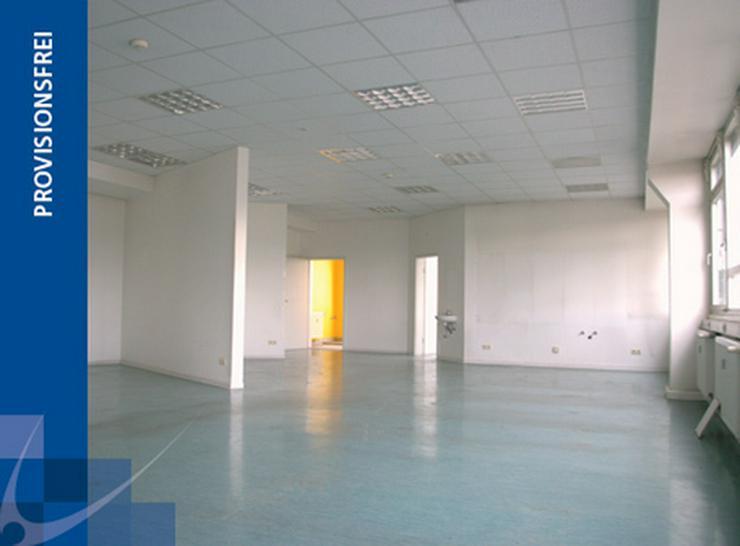 TOP-FLÄCHE - IDEAL ALS GROßRAUMBÜRO ODER SHOWROOM - AB 4,49 EUR/m² - Gewerbeimmobilie mieten - Bild 1