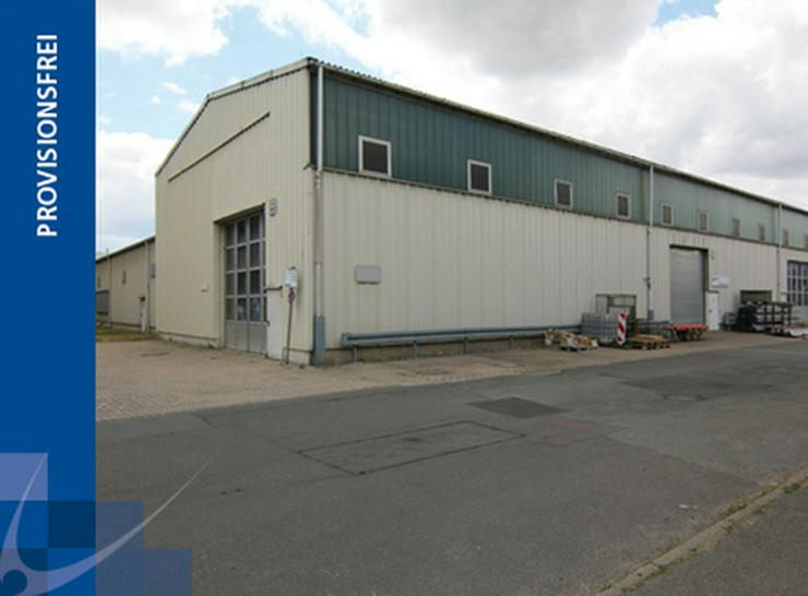 1024 m² LAGERFLÄCHEN MIT WACHSTUMSMÖGLICHKEITEN AB 2,99 EUR/m² - Gewerbeimmobilie mieten - Bild 1