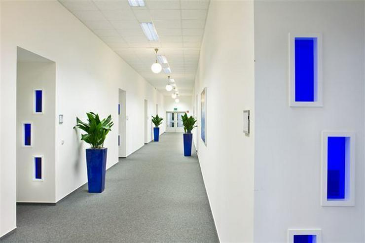 Bild 5: GROßRAUMBÜRO MIT RUHIGEN ARBEITSZONEN UND TEEKÜCHE AB 7,10 EUR/m²