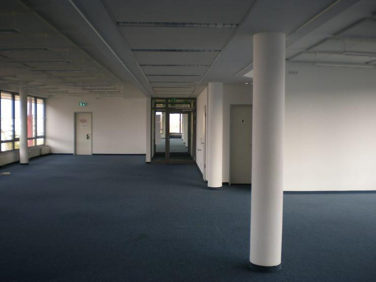 Bild 4: GROßZÜGIGE BÜROFLÄCHE MIT CAT7-DATENVERKABELUNG & AUFZÜGE AB 10,59 EUR/m²