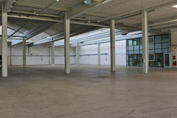 Bild 3: EBENERDIGE LAGERFLÄCHE IN 2 ABSCHNITTE ABGETEILT MIT KRAN & RAMPE AB 1,99 EUR/m²