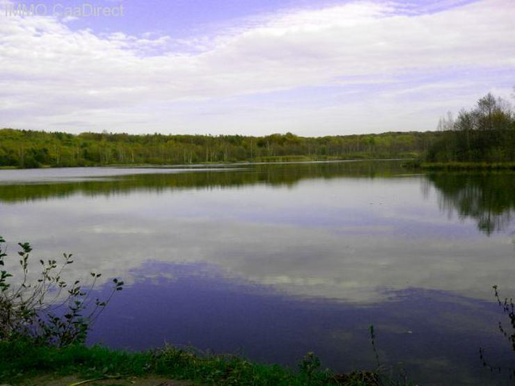 Bild 1: Fischereiparadies mit 10 ha grossem See in den Vogesen
