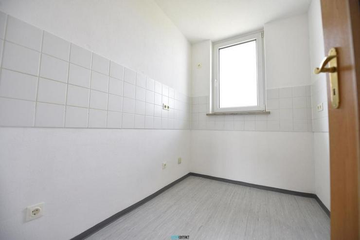 Bild 6: Taucha * Wohlfühl-2ZKB mit sehr großer Terrasse und großem Wohnzimmer * schön sonnig *