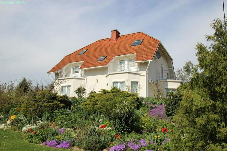 Exklusives Wohnhaus - Haus kaufen - Bild 1
