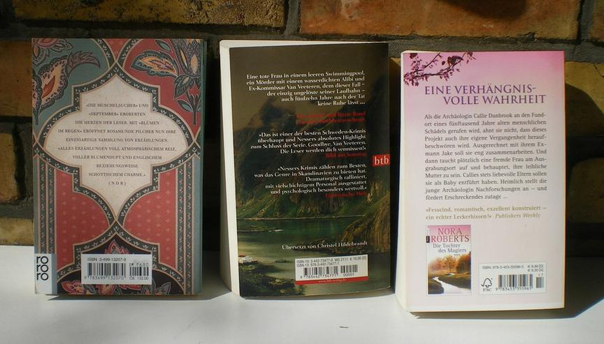 Bild 5: Bücher / Romane 4 Stück (FP)