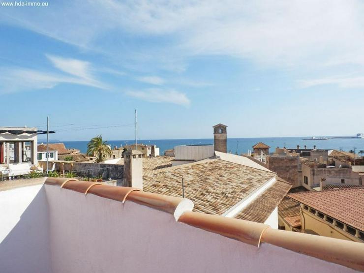 Wohnung in 07000 - Palma de Mallorca - Auslandsimmobilien - Bild 1
