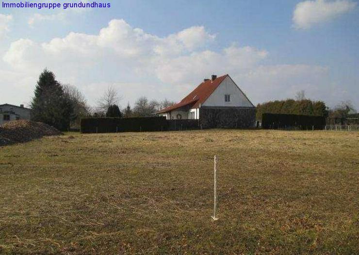 Bild 3: Traumlage kurz vor Usedom, Erbbaurecht, späterer Kauf möglich