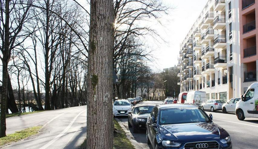 Bild 14: Luxuriöses, sonniges Apartment an der Isar im belebten Dreimühlenviertel