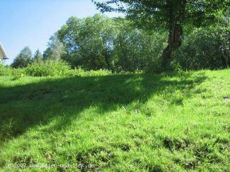 Attraktives Grundstück in Menzenschwand zu verkaufen - Grundstück kaufen - Bild 2