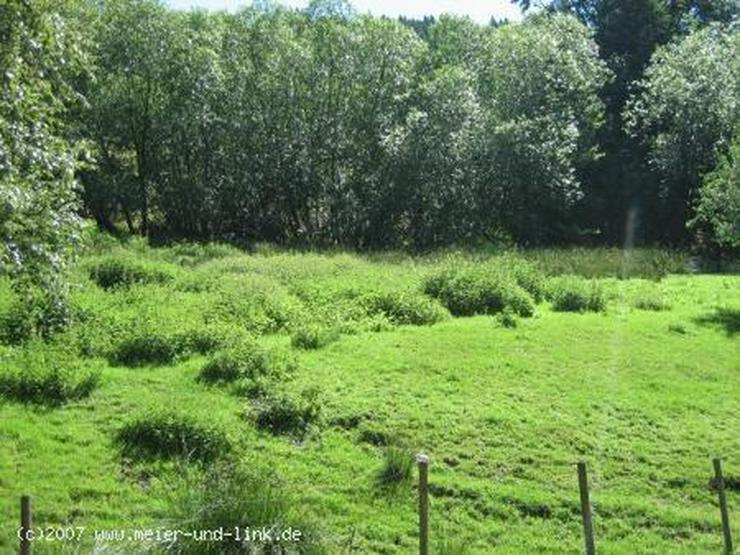 Attraktives Grundstück in Menzenschwand zu verkaufen - Grundstück kaufen - Bild 4