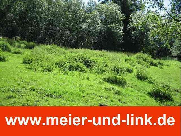 Attraktives Grundstück in Menzenschwand zu verkaufen - Grundstück kaufen - Bild 1