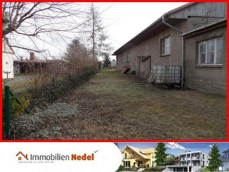Bild 5: Grundstück in Gielow bei Malchin