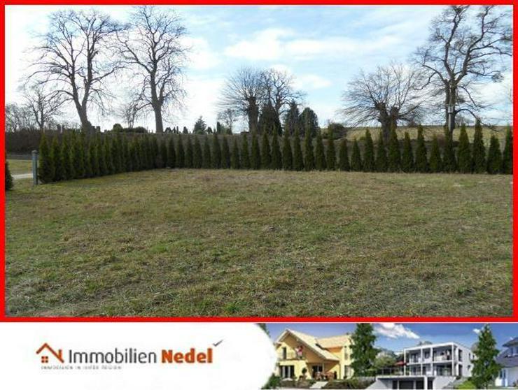Bild 6: Grundstück in Gielow bei Malchin