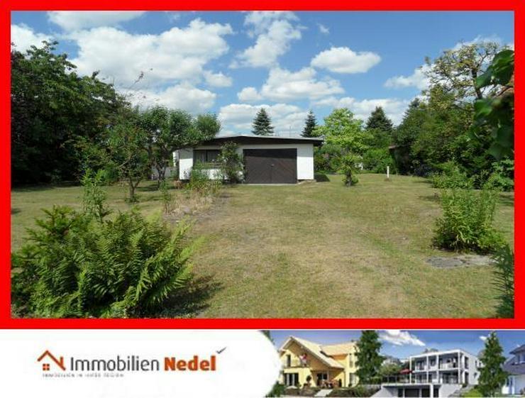 Baugrundstück in Grimmen - Grundstück kaufen - Bild 1