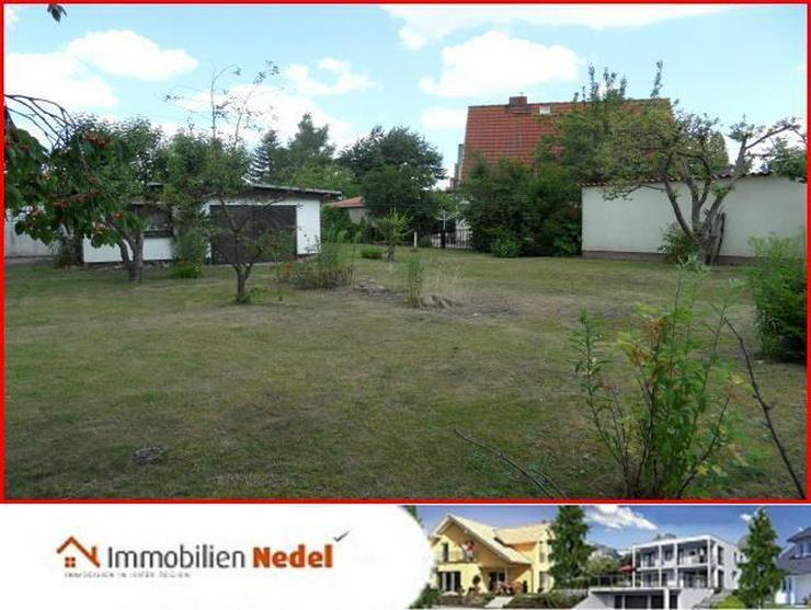 Bild 4: Baugrundstück in Grimmen
