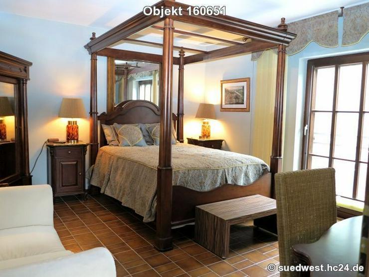 Bild 4: St-Leon-Rot: Top gepflegte 1-Zimmer-Wohung mit Terrasse