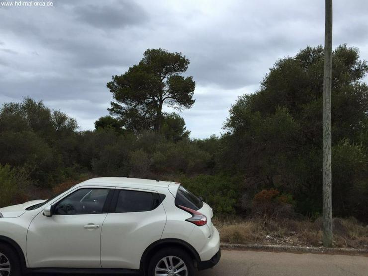 Bild 5: Grundstueck in 07639 - Vallgornera