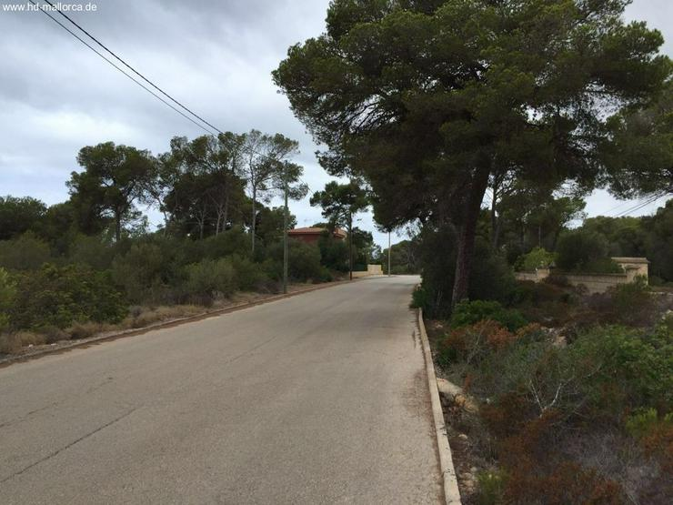 Bild 4: Grundstueck in 07639 - Vallgornera