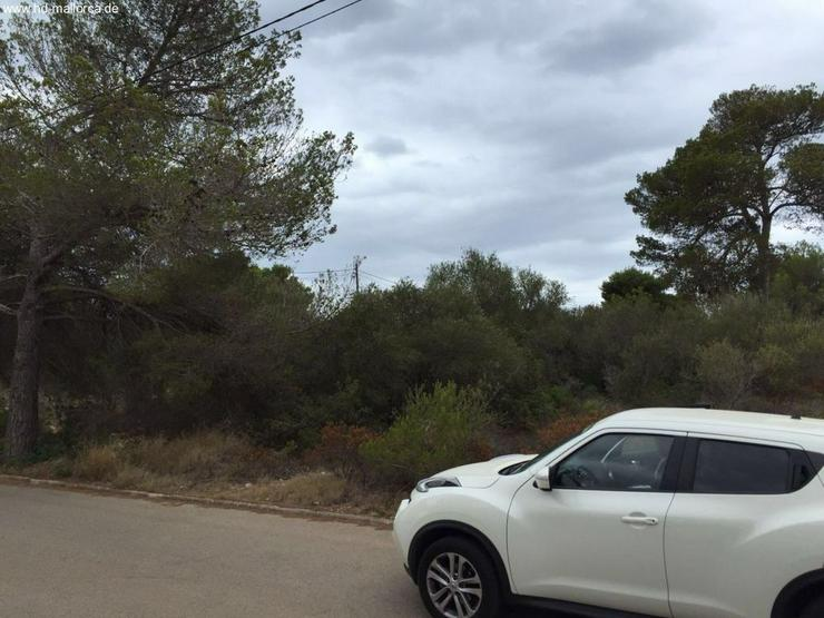Bild 6: Grundstueck in 07639 - Vallgornera