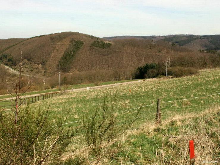 Bild 4: Unverbaubare Fernsicht in der Eifel - 882,00 qm - GS-SB78