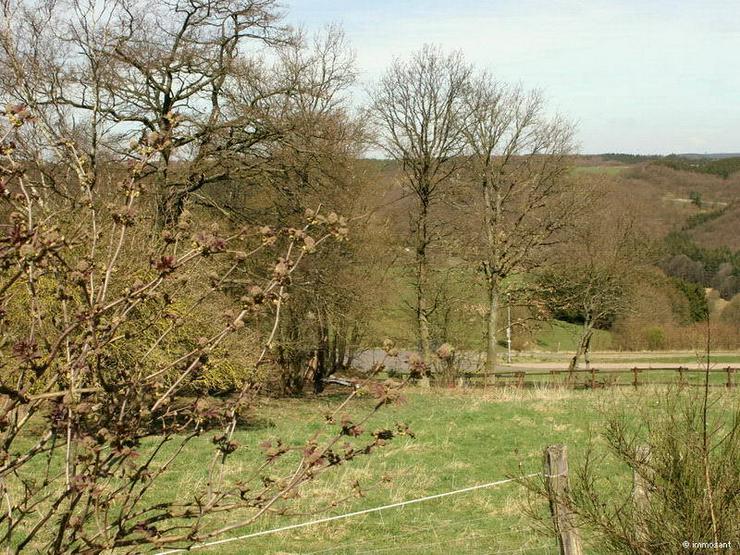 Bild 2: Unverbaubare Fernsicht in der Eifel - 882,00 qm - GS-SB78