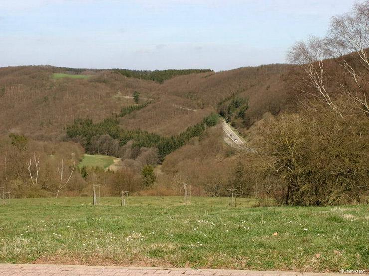 Bild 4: Unverbaubare Fernsicht in der Eifel - 766,00 qm - GS-SB86