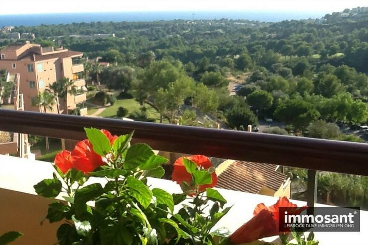 Schönes Penthouse mit weitläufigem Terrassenblick im Real Golf de Bendidat - MS05813 - Haus kaufen - Bild 4