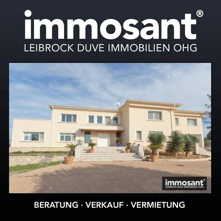 Neuerbaute Villa über Alcudia - Bezugsfrei - Vollkommene Ausstattung - MS05542