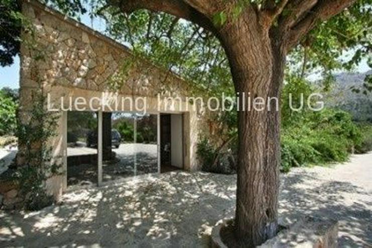 Bild 5: Haus in 07460 - Pollensa