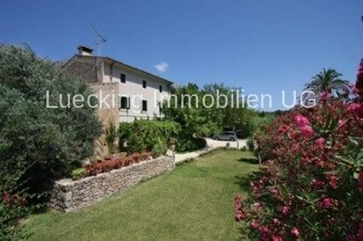 Haus in 07460 - Pollensa - Auslandsimmobilien - Bild 1