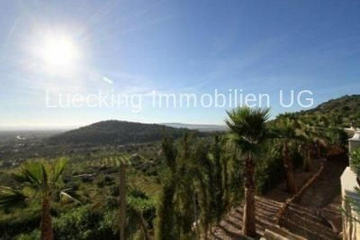 Haus in 07300 - Alaro - Auslandsimmobilien - Bild 2