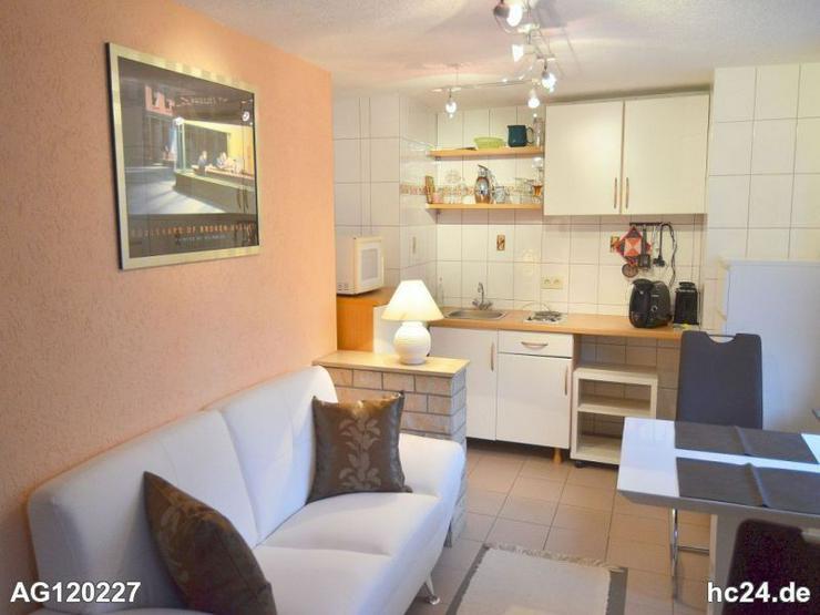 Bild 2: Möbliertes 1,5 Zimmer Apartment in Badenweiler
