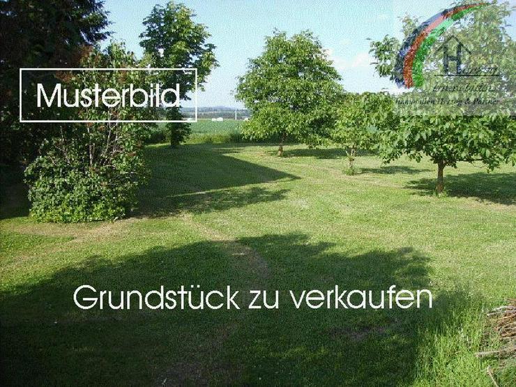 Schönes Grundstück in toller Lage nähe Weiden zu verkaufen - Grundstück kaufen - Bild 1