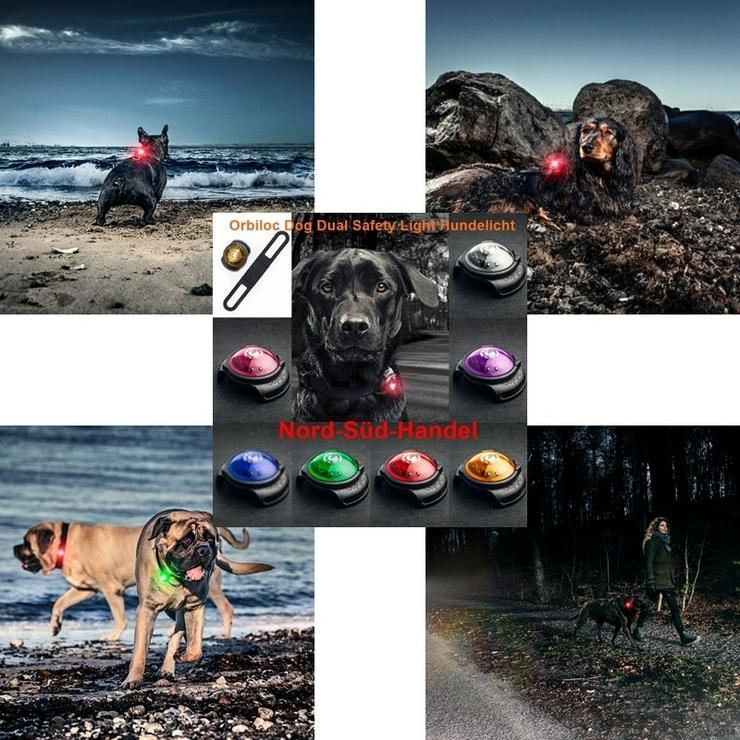 Bild 5: Hundelicht Orbiloc Dog Dual Safety Light