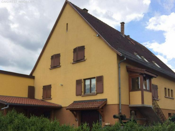 Bild 6: Grosszügiges Wohnhaus mit Umschwung u. Pferdestallungen im Elsass - 80 km v/Basel 20 km v...