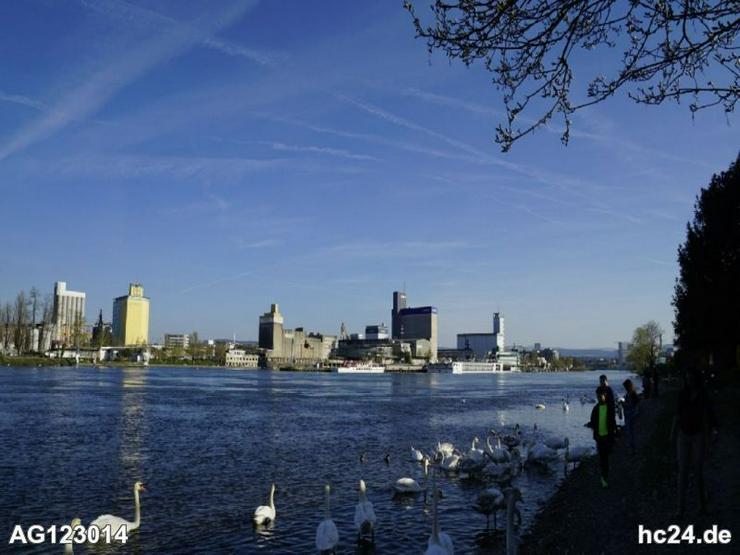 Bild 11: Zentrales und möbliertes Apartment in Weil am Rhein- Friedlingen