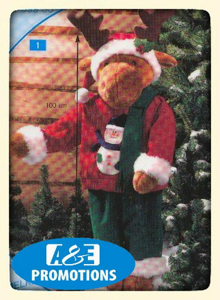 Bild 4: mieten weihnachtsdeko oldenburg bremen emden