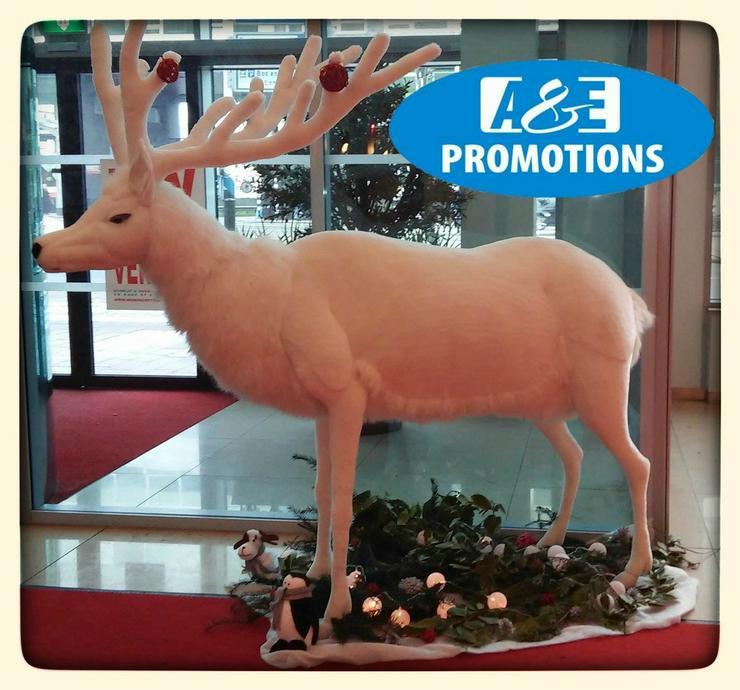 Bild 5: mieten weihnachtsdeko oldenburg bremen emden